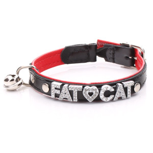 Czarna Obroża dla Kotów...