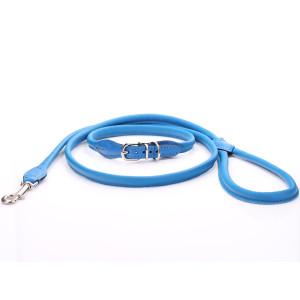 Niebieski Komplet - Obroża...